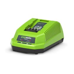 toptopdeal Greenworks G40UC Battery Quick Charger