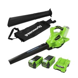 toptopdeal Greenworks 24227UG 40V Cordless Blower Vacuum with 2x2,5Ah Battery and Universal Charger, Green
