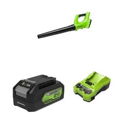 toptopdeal Greenworks 24V Cordless Axial Blower