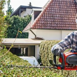Einhell Trimmers & Hedge
