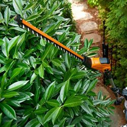 WORX Hedge Trimmers & Cutter