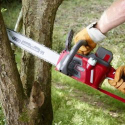 Mountfield Chainsaws
