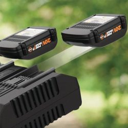 Worx Battery and charger